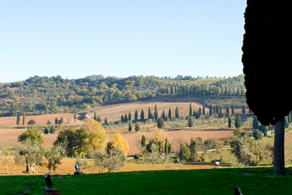 The view from Villa BRV ANT (Mulino) at Italy, Tuscany/Val D Orcia, Family-Friendly Villa, Pool, 4 Bedrooms, 3 Bathrooms, WiFi, WIMCO Villas