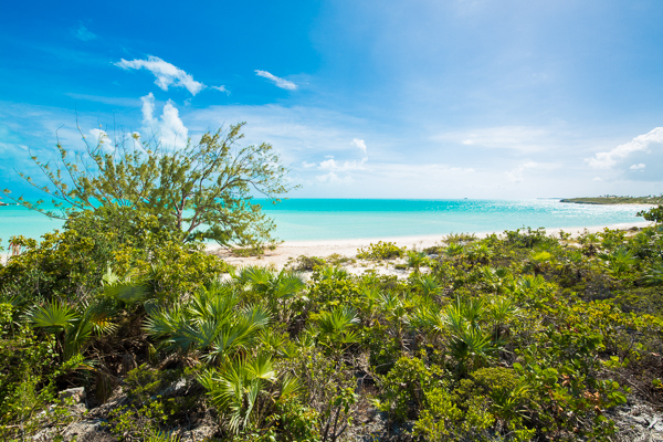 The view from Villa IE FIT (Five Turtles) at Turks & Caicos, Ocean Pt/Taylors, Family-Friendly Villa, Pool, 4 Bedrooms, 4 Bathrooms, WiFi, WIMCO Villas
