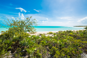 Family Villa, Family Reunion, Turks and Caicos, IE FIT, WIMCO Villas