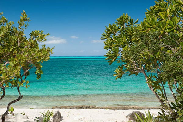 Beach at Villa TNC WED (Water Edge - The Cottages at Grace Bay) at Turks & Caicos, Grace Bay/Beachside, Pool, 1 Bedrooms, 2 Bathrooms, WiFi, WIMCO Villas