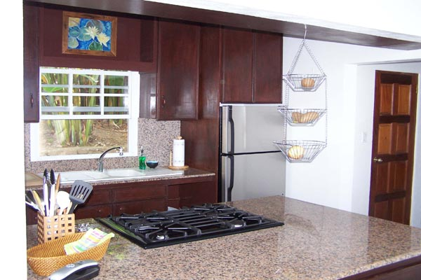 Kitchen at Villa WMB CAR (Carolina Cottage) at Saba, Troy Hill, Pool, 2 Bedrooms, 2 Bathrooms, WiFi, WIMCO Villas